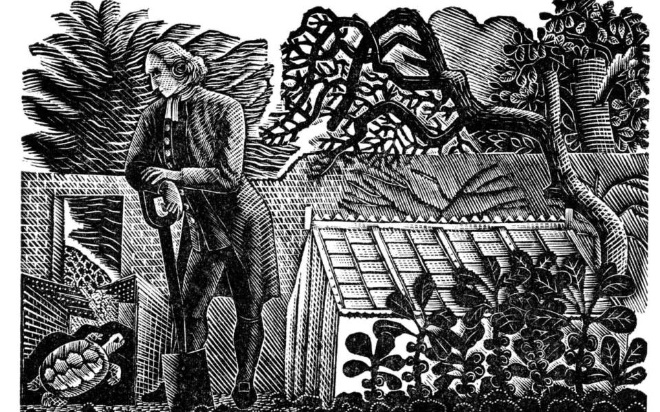 Eric Ravilious, The Tortoise in the Kitchen Garden from 'The Writings of Gilbert White of Selborne'