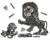 Black and white engraving showing a lion cub playing with the head of Santa while an older lion rears over it.
